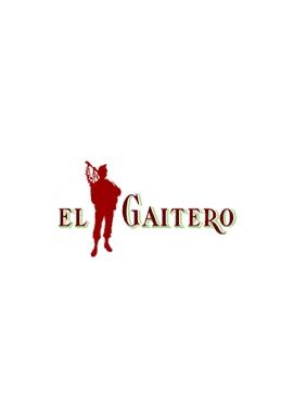 FERNET GAITERO 900 CC